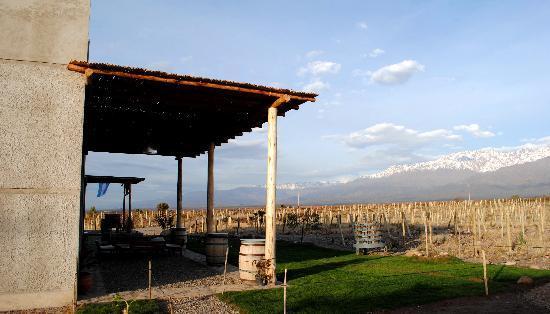 Bata um papo com os donos da Gimenez Riili bebendo vinho e comendo empanadas com essa vista. Foto: Trip Advisor
