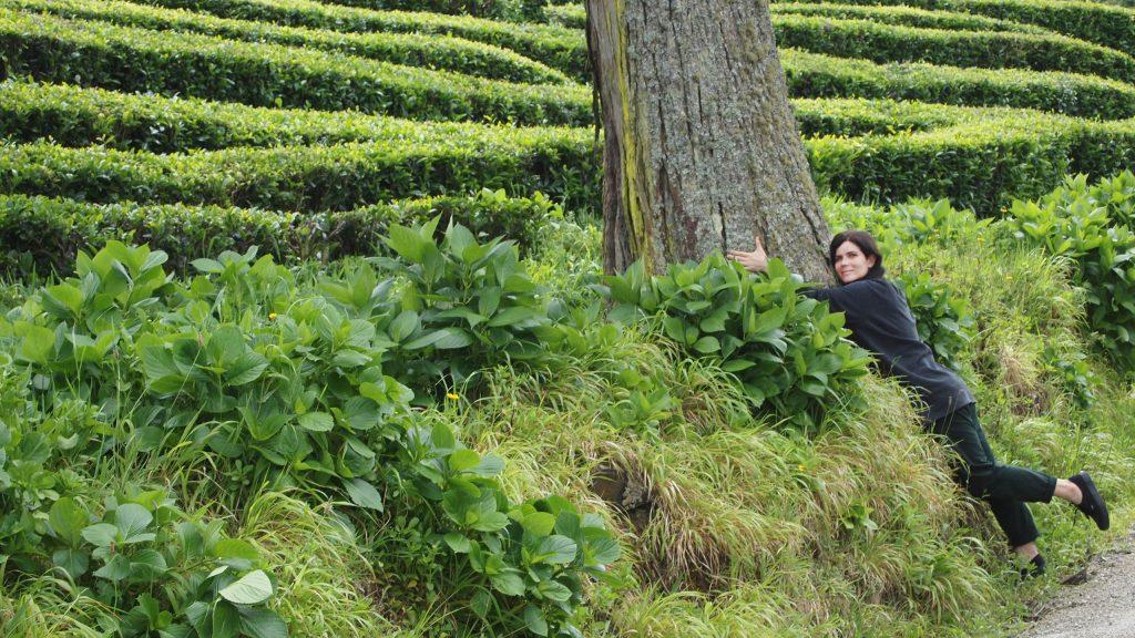 turista-viajante-abraçadeira-de-árvores. (Foto: Pedro Sousa)