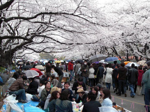 Tokyo-Ueno Park