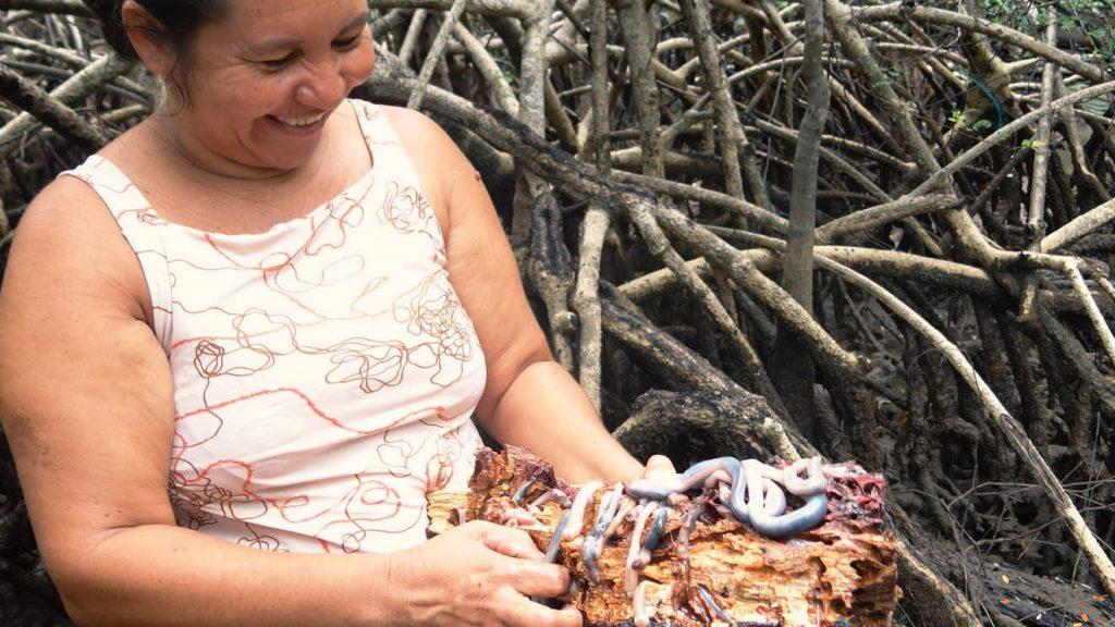 Dona Neide nos apresentando o tutu, no mangue. Foto: Flávia Elisa Pereira