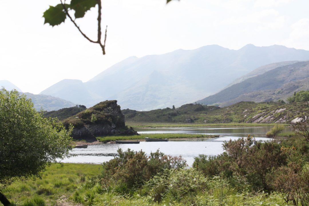 Killarney National Park, um dos parques mais bonitos da Irlanda - foto: Carlos Raffaeli