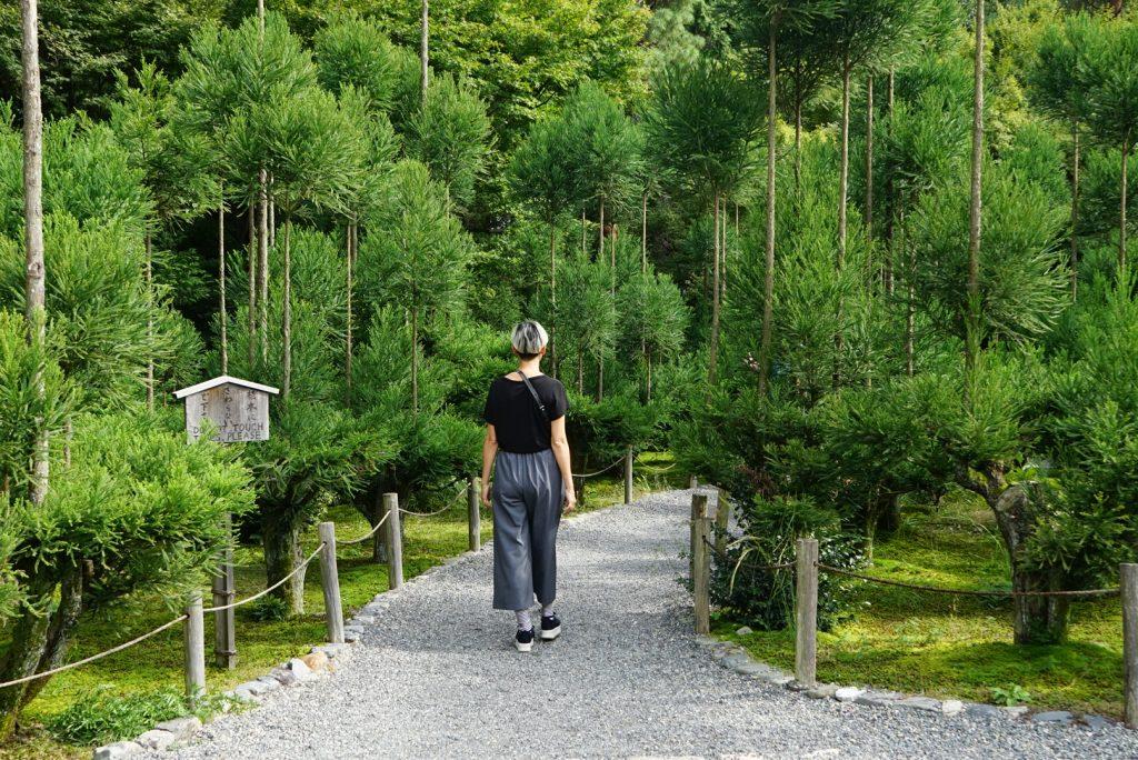 Eu passeando pelos jardins (não o de pedra, onde não se pisa)
