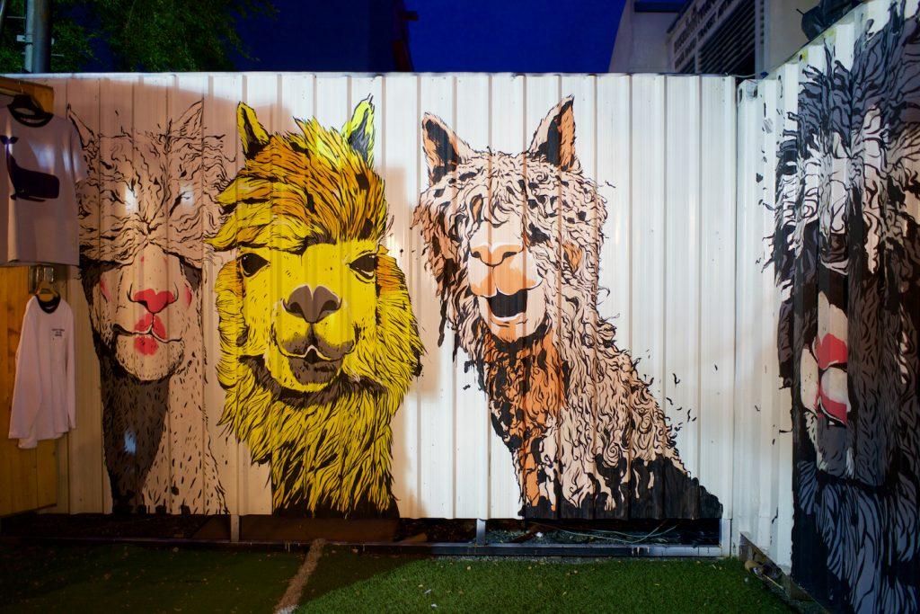 O Artboxé cheio de arte e frases de efeito instagramáveis. Foto: Lalai Persson