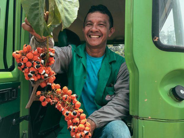 O Ademir, que é saterê-mawé, conhece o guaraná como a palma da mão