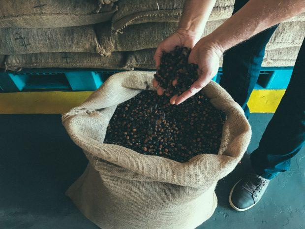 A semente do guaraná: de Maués para suas mãos