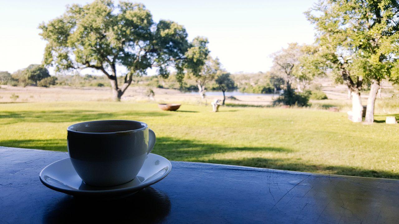 Tomar um cafézinho com essa vista não é nada mal, hein! Foto: Jo Machado