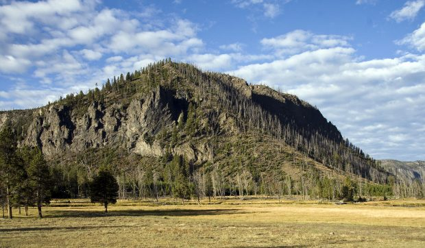 Yellowstone Park em 2010 - foto: Acroterion
