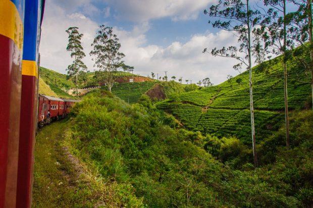 Trem no Sri Lanka: Foto Nerd Nomads