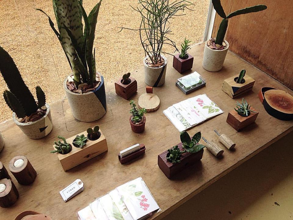 Escola de Botânica. Reprodução.