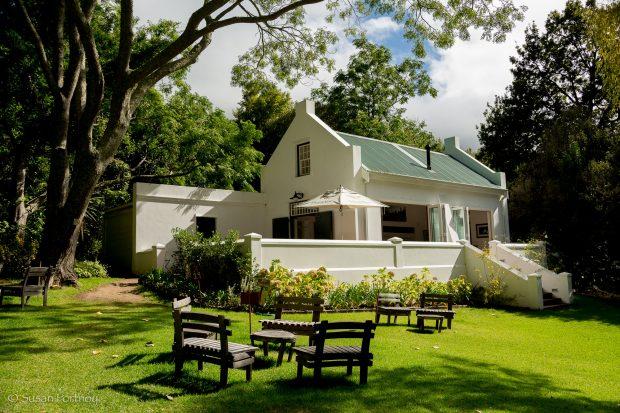 Vinícola Eagles Nest, África do Sul - foto: divulgação