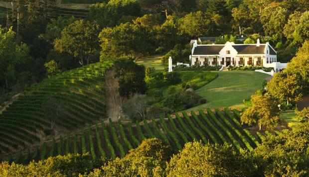 Vinícola Constantia Glen, África do Sul - foto: divulgação