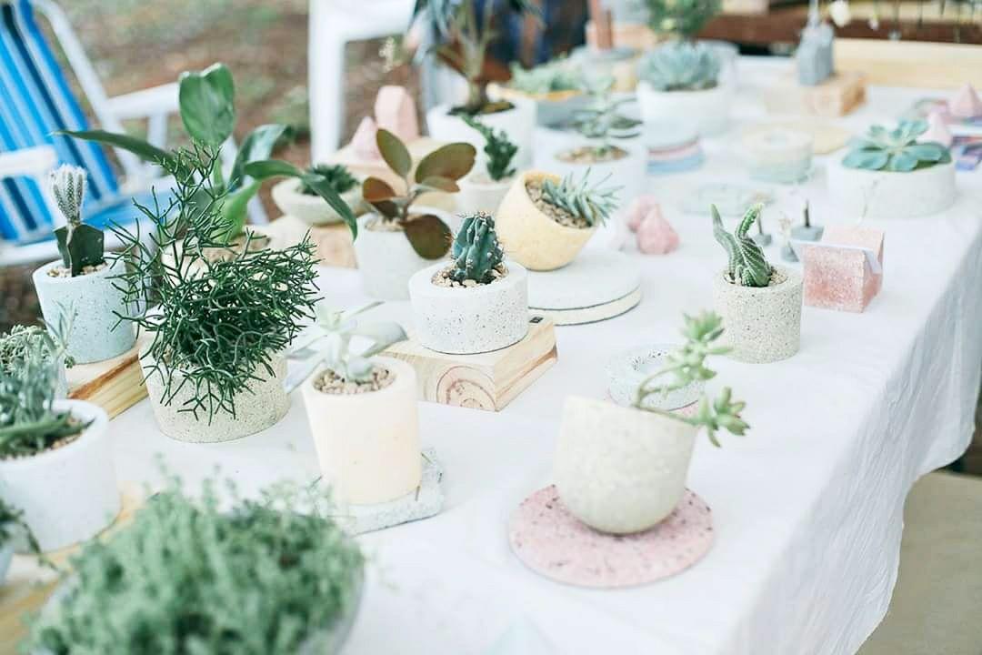 jardim secreto, lojas alternativas, expositores manuais, cacto, cerâmica, praça do bixiga