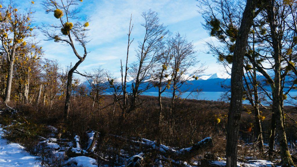 No meio da caminhada com o Lago Fagnano ao lado. Foto: Ola Persson