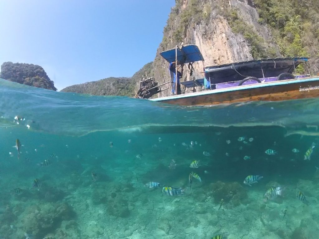 Peixinhos e água turquesa em Phi Phi