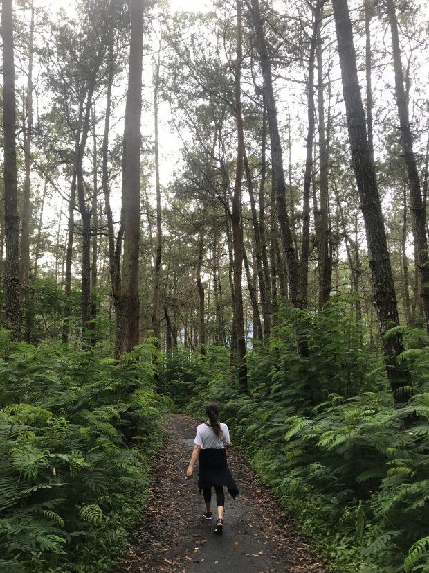 trekking no Mount Batur como é