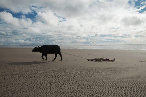 À Nordeste / Foto: Juliana Notari