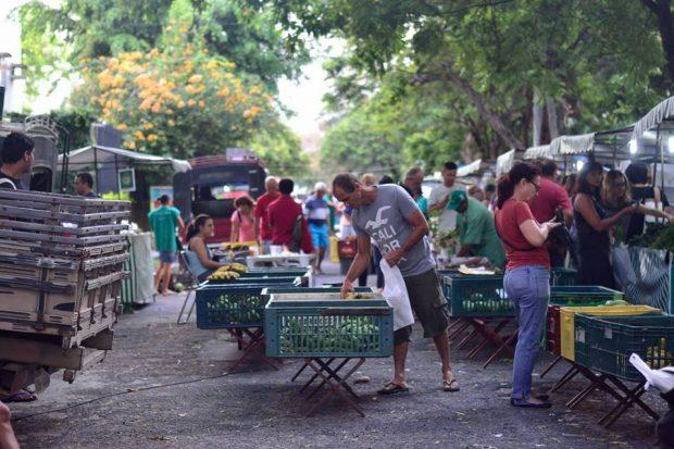 Feira Agroecológica das Graças - Recife. Foto: Terra É Vida