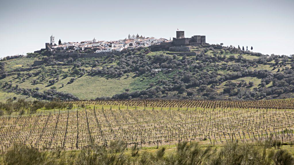 As vinhas da propriedade do Hotel Barrocal, e ao fundo a vila de Monsaraz