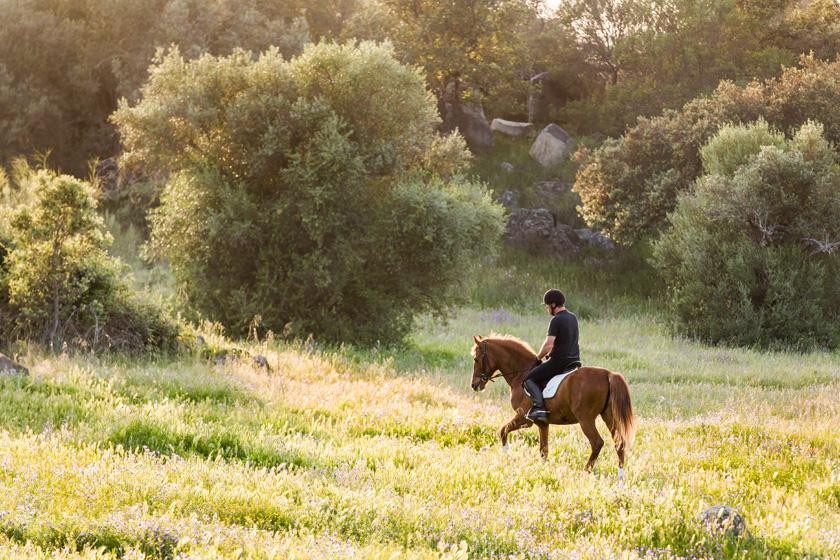 Passeio a cavalo, Alentejo, Portugal.