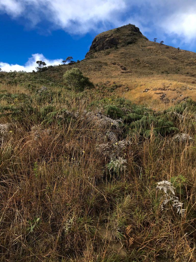 Primeira parada na travessia Cobiçado x Ventania, o pico do Cobiçado (foto: Luciana Guilliod)
