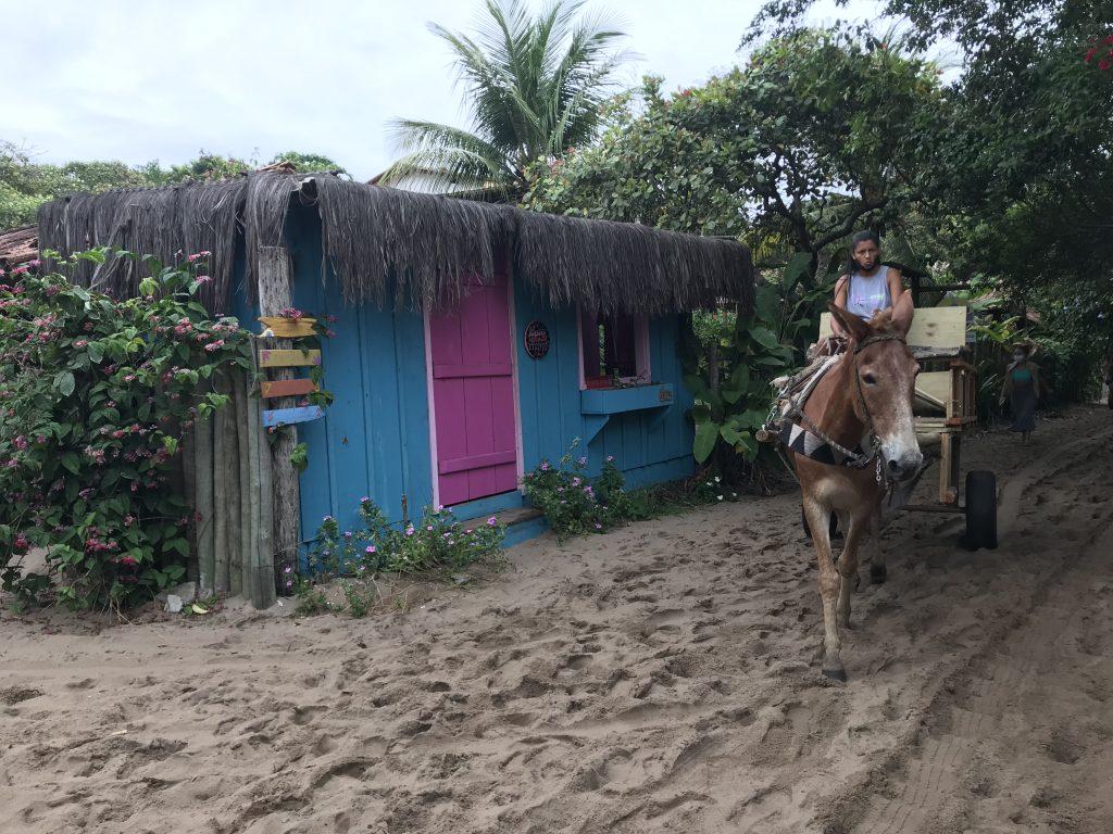 A versão caraíver para prédio, asfalto e automóvel para viajar de carro para a Bahia (foto: Luciana Guilliod)