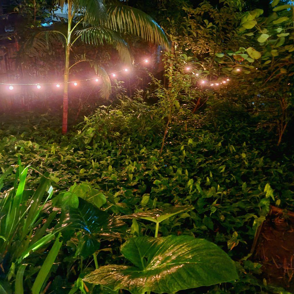 O jardim da A-Horta para esquecer que está na cidade.