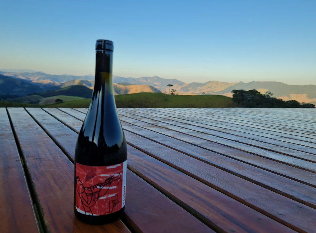 Marcas conscientes nacionais: Vivente Vinhos Vivos sustentável. foto: @entaovah