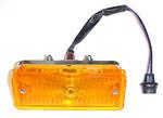 1967-1968 Parklight/signal lamp assembly