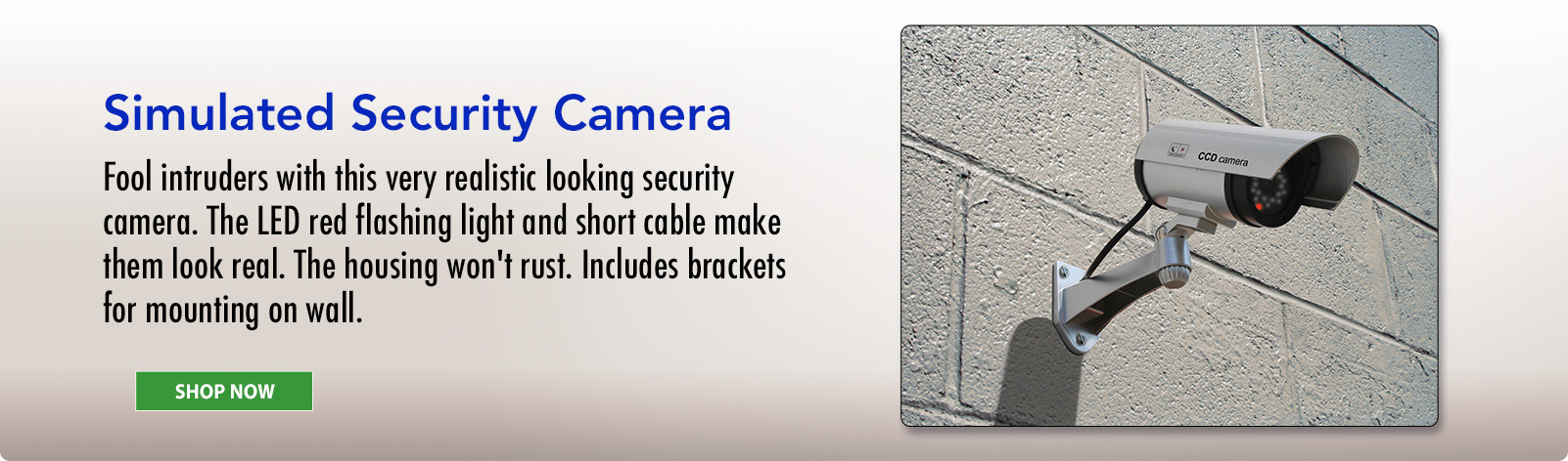 Simulated Security Camera