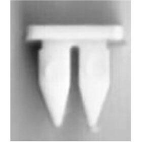 Toyota Headlight Nut #10 (25)
