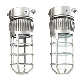 LDPI LEVP Series LED Wet/Damp Light Fixture - Glass Globe w/ Guard