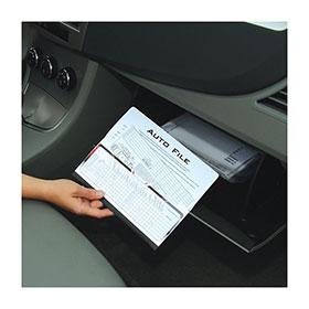 Auto File In Use