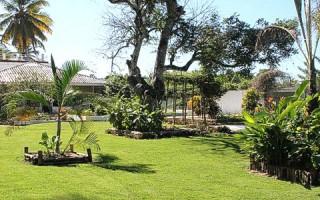 Cómo Decorar el Jardín
