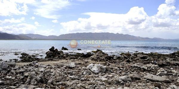 Playa Caracoles Republica Dominicana