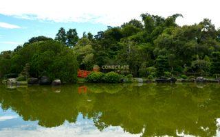 Jardín Botánico Nacional Dr. Rafael M. Moscoso