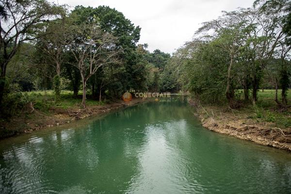 Jamao al Norte