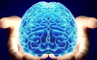 Habitos que Dañan el Cerebro