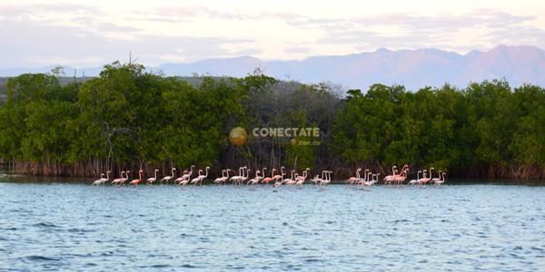 Bahía de las Calderas Peravia