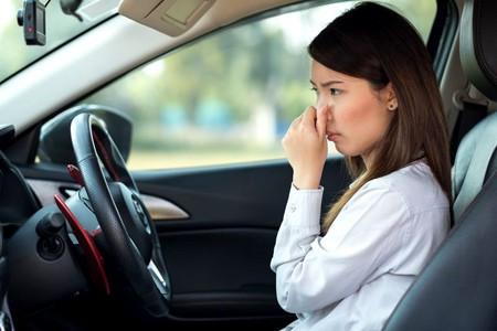 Como Eliminar Malos Olores del Auto