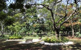 Parque Mirador del Sur