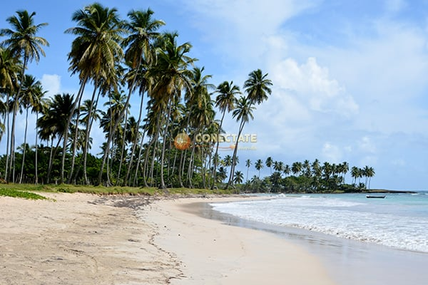 Playa La Boca María Trinidad Sánchez