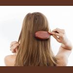 Tipos de Peines y Cepillos para el Cabello