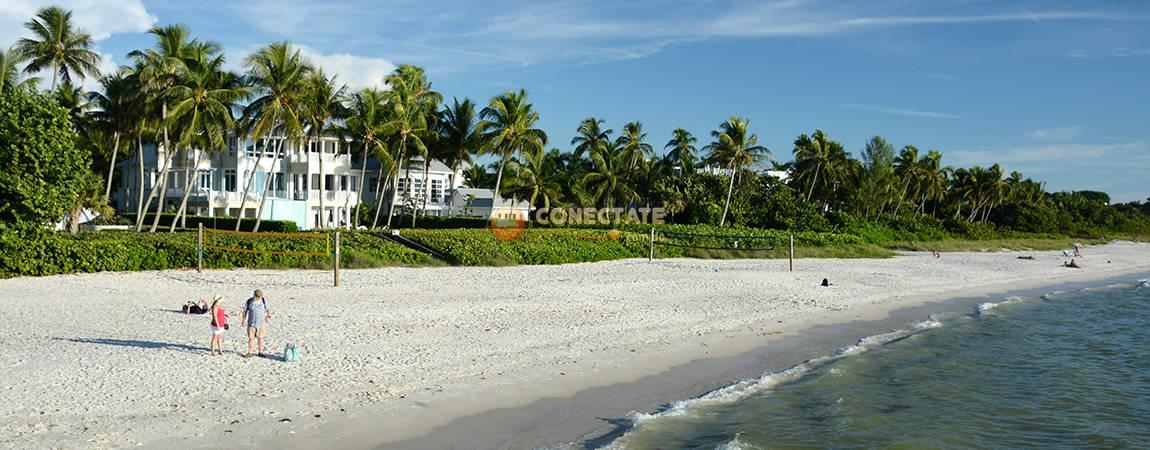 Florida 5