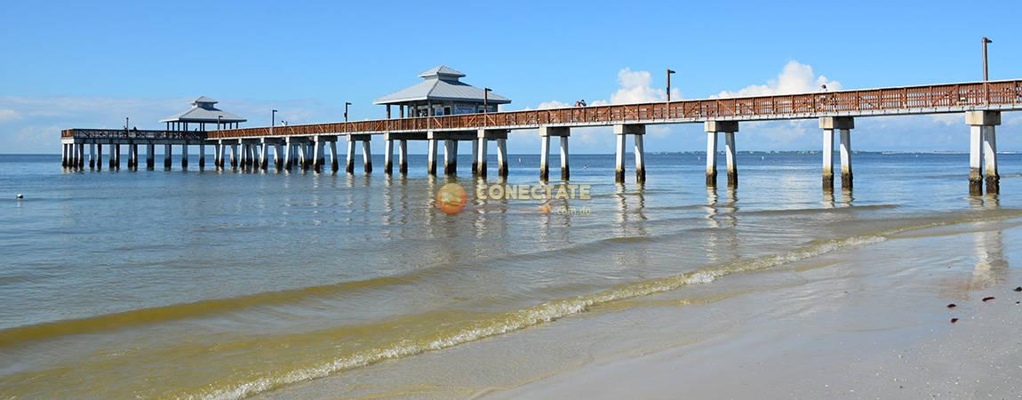 Florida 7