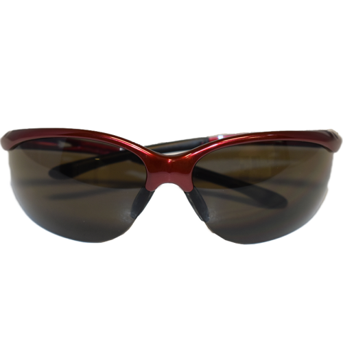 Redhawk Anti--Fog Safety Glasses