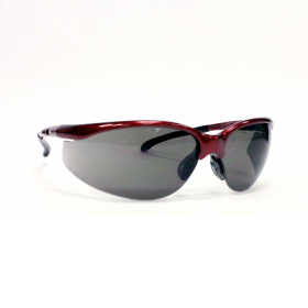 REDHAWK ANTI-FOG SAFETY GLASSES