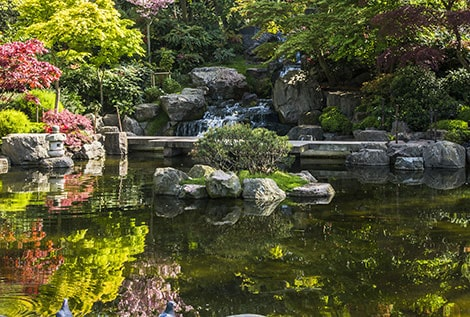 How to Measure a Water Garden