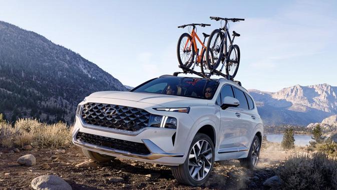 Hyundai Santa Fe - Image