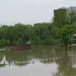 Ford Field Flood