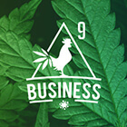 45 Medical Marijuana and Weed Logo Designs for Branding Your Cannabis Business